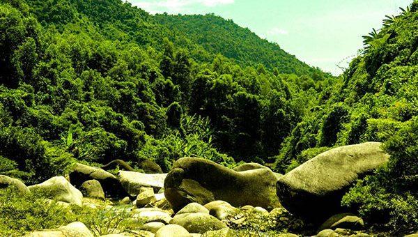 Hòa Phú Thành - Đà Nẵng
