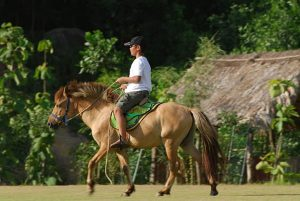Cưỡi ngựa xem hoa